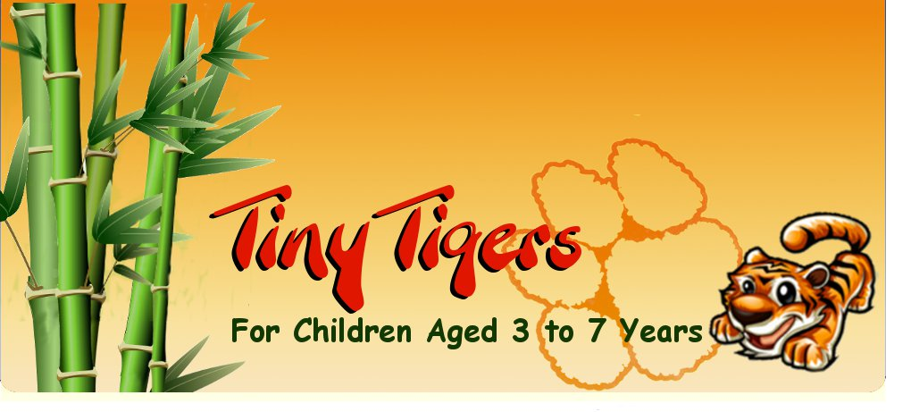Tiny Tigers - Fun and Exercise for 3 to 5year olds!
